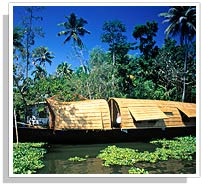 Classic Kerala with Backwater